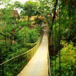 Cee's Photo Challenge: Path 3