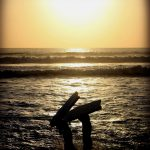 Weekly Photo Challenge: Golden Moment 5