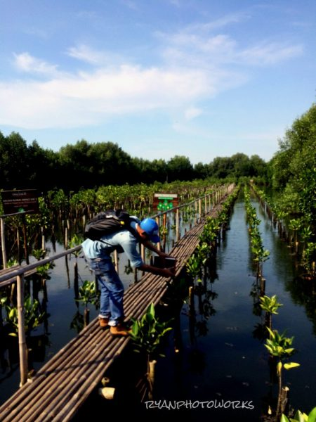 Wisata Alam Tersembunyi di Jakarta 1