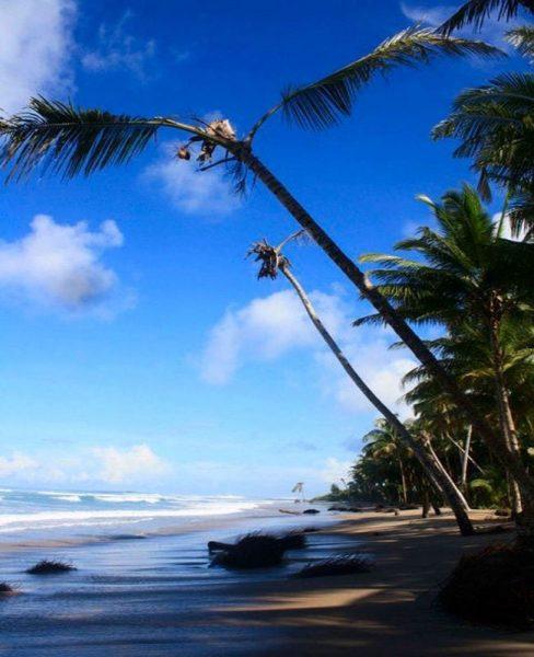pantai di indonesia yang wajib dikunjungi - mentawai