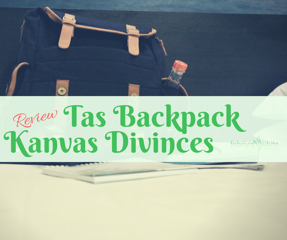 review tas backpack atau ransel kanvas divinces