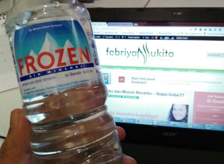 manfaat air mineral bagi tubuh frozen air mineral